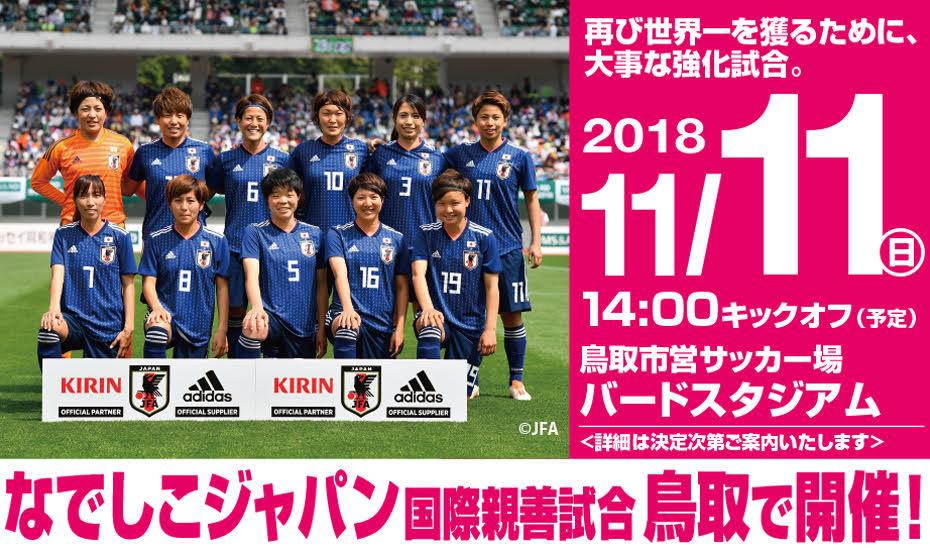 11/11(日) なでしこジャパン国際親善試合